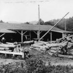 Log yard at Carolina Wood Turning - Extension Service photo