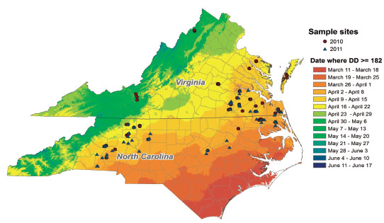 Map of the average week when cereal leaf beetle reaches peak egg lay in North Carolina and Virginia