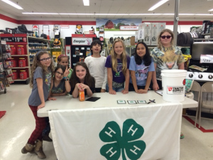 Members of the Chatham County Low Riders 4-H Club participating at the 2015 Spring Paper Clover Campaign at the Siler City Tractor Supply Store.