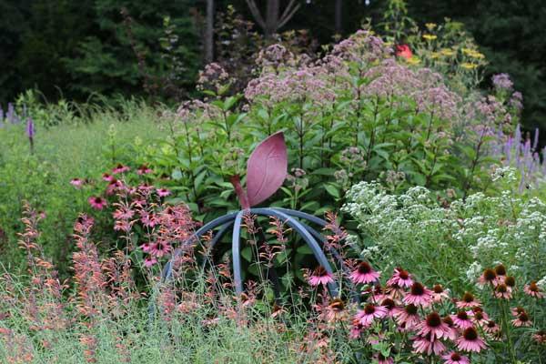 Pollinator Paradise Garden Featured on Almanac Gardener | North ...