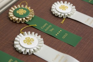 Rosettes are presented to the youth for their hard work.