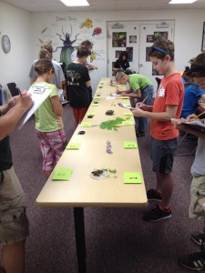 Contest participants determine the food types and what wildlife would eat each one