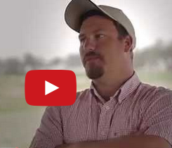 Strawberry farmer interview