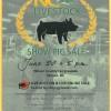 Pig Show Sale3662097080806873_n