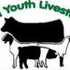 4H and livestock