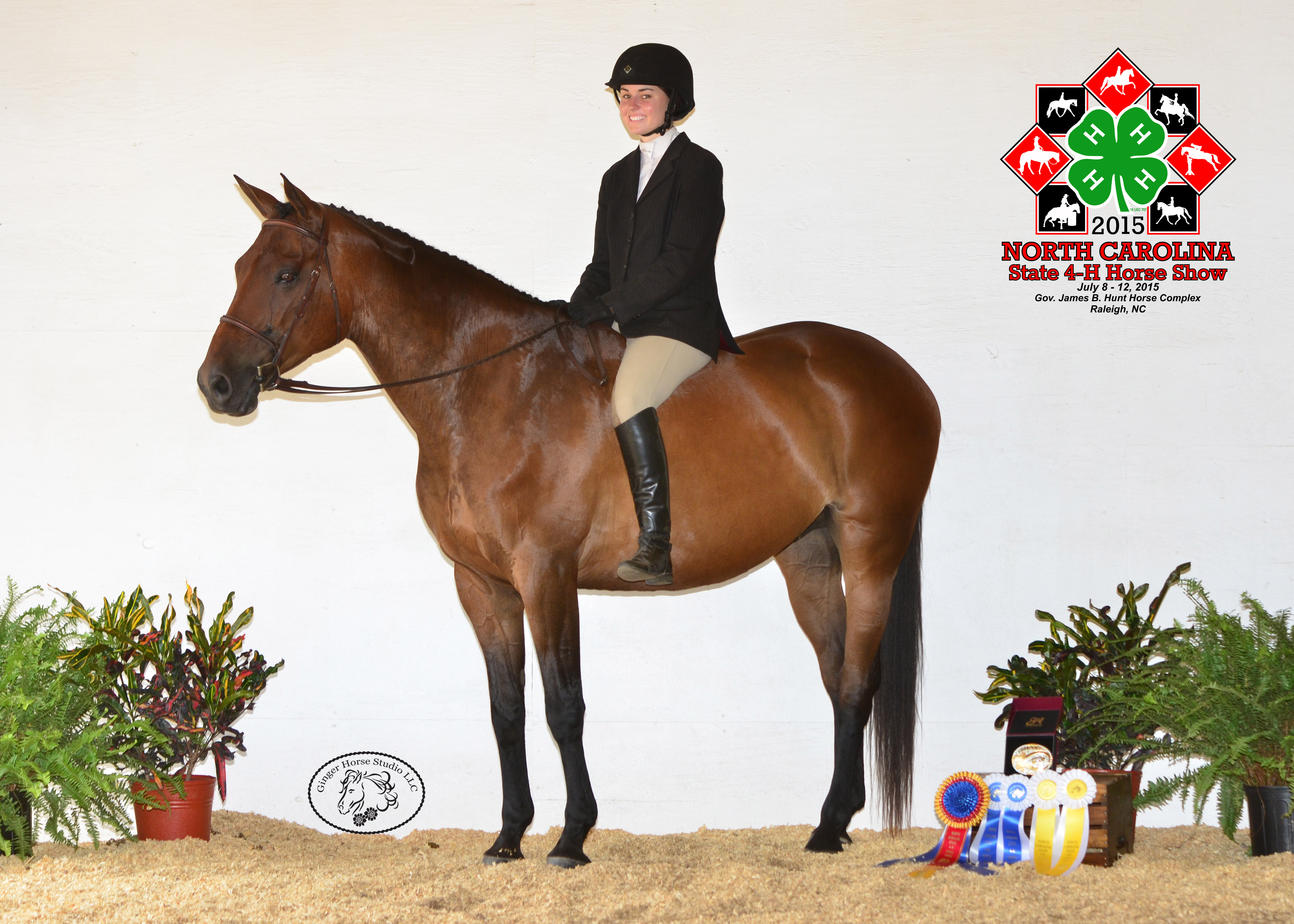 NC State 4-H Horse Show Champions Crowned | NC State Extension
