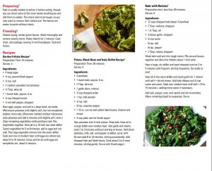 Kale Publication, page 2