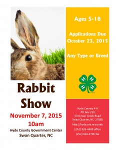 3rd Annual Rabbit Show Flyer (JPEG)
