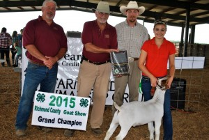 Rachel Murphy of Johnston County had the Grand Champion Wether. Pictured from left: Ricky Dewitt and Donnie Richardson, Richmond County Farm Bureau Board of Directors, Ted Clayton, Show Judge, and Rachel Murphy.