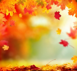 Moody autumn background with falling leaves on wooden planks