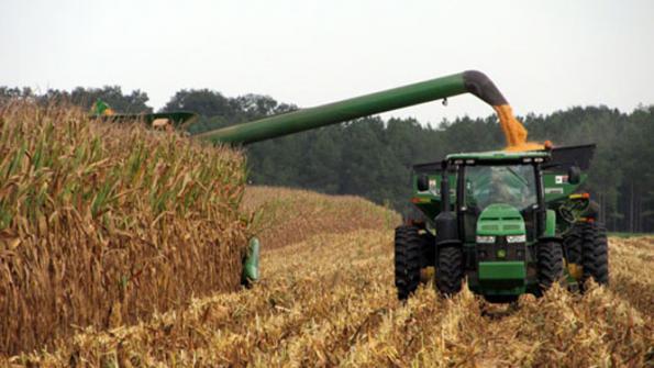 https://www.ces.ncsu.edu/wp-content/uploads/2015/09/tennessee-corn-harvest.jpg