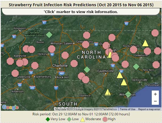 Strawberry risk map oct 2015
