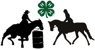 Image result for 4h horse