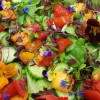 Salad from local veggies and edible flowers. Photo by Debbie Roos.