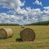 a-golden-harvest-of-hay-in-north-augusta-south-carolina-willie-harper