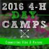 2016SummerCamps_webgraphic