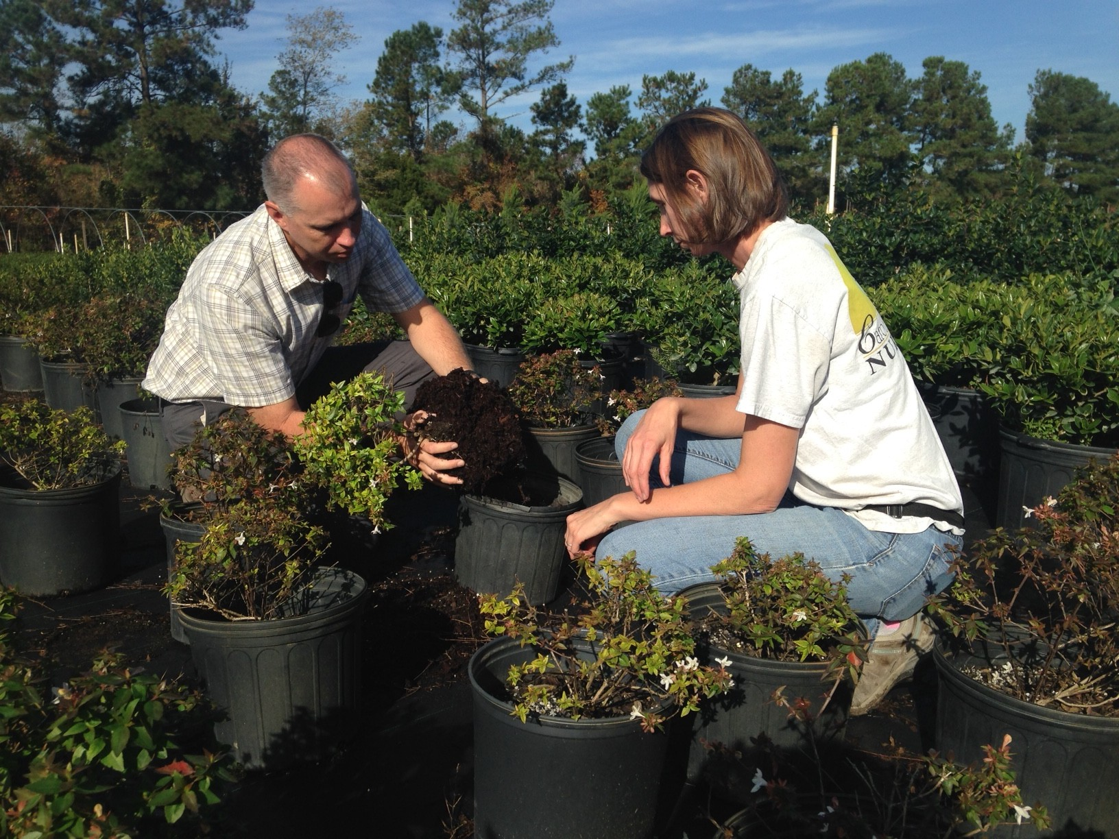 Danny will be working with Nursery and Greenhouse Growers in eastern NC starting March 1, 2016.