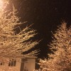 Snow 25 March 2014