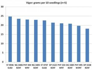 Vigor of 2015 On-Farm Varieties