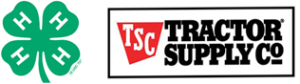 logo-header-promo-toolkit