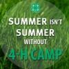summer 4h meme