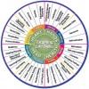 Life skills wheel 2