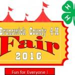 Fair logo 2016