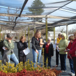 Plant ID Training