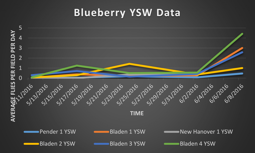 This is a graph depicting number of SWD captured on a total/SWD per day basis in YSW traps.