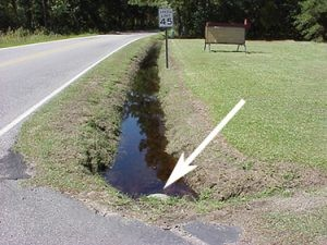 Drainage ditches clogged with storm debris collect and hold rainwater.