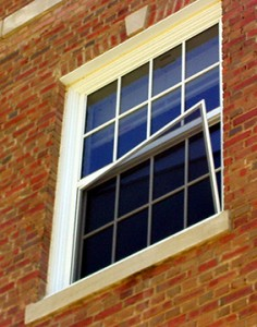 Window screen loose from window