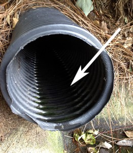 gutter drain pipes need to be directed down to drain properly