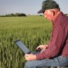Farmer using laptop computer