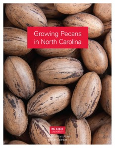Image of the cover of Growing Pecans in North Carolina