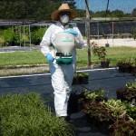 Granula herbicide application ABarker