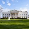 White House Avatar