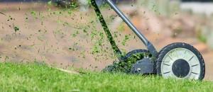 lawn-mower free image