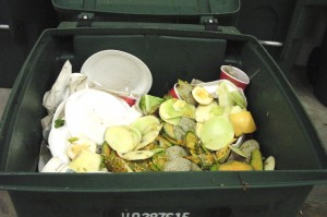 Cover photo for Thinking of Starting a Larger Composting Project?