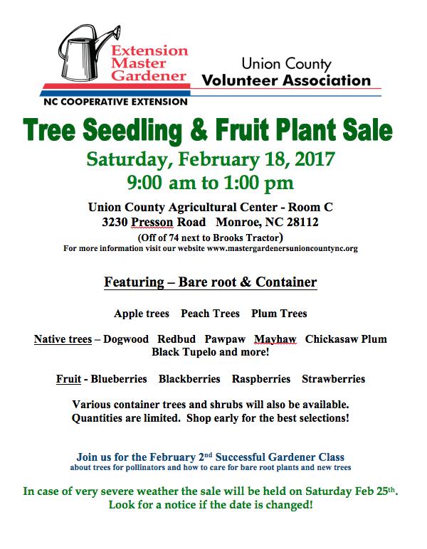 Master Gardeners Tree Seedling Fruit Plant Sale North Carolina Cooperative Extension