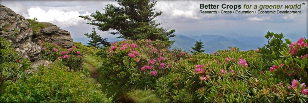 Mountain Scene - Better Crops for a greener world