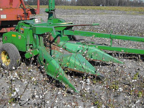 two-row silage harvester harvesting cotton stalks