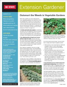 Cover photo for 2017 Summer Edition of Extension Gardener Newsletter Is Now Available