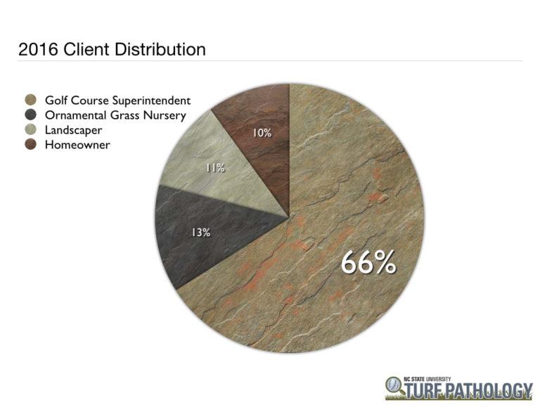 pie chart showing 2016 client distribution