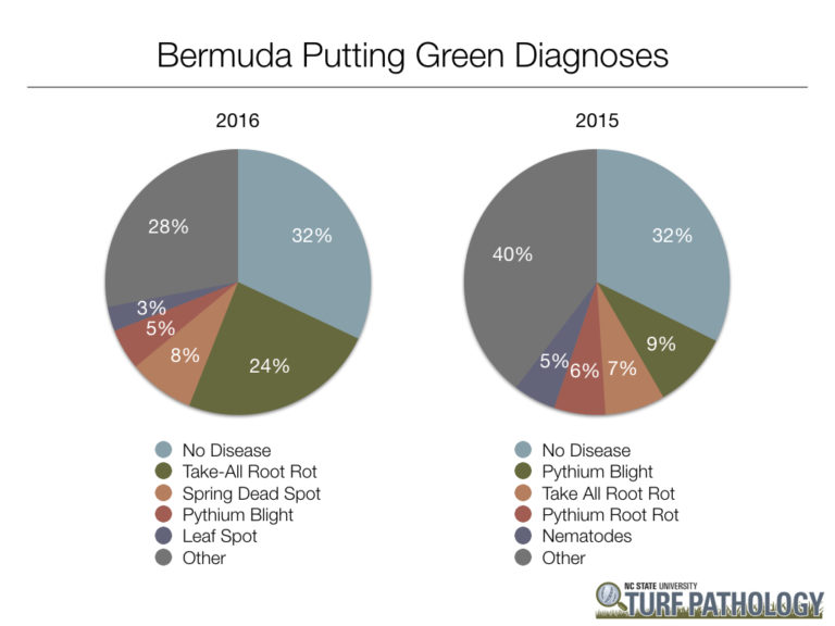 two pie charts showing 2016 and 2015 bermudagrass putting green diagnoses