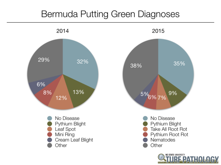 Pie charts showing 2014 and 2015 Bermuda putting green diagnoses