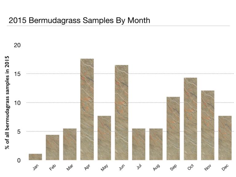 bar chart of 2015 Bermudagrass Samples by Month