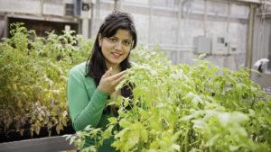 Cover photo for Great Article Featuring Horticultural Science Graduate Pragya Adhikari