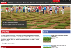 Screenshot of 2016 version of the website.