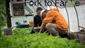 Cover photo for Buncombe County Fork to Farmer Video