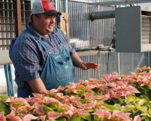Cover photo for NC AgVentures Grant Helps Farmer Develop a Christmas Destination